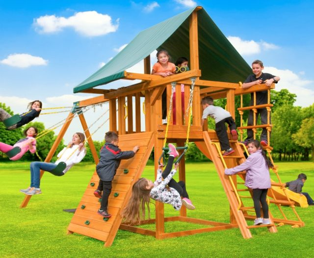 Dream Wood Swing Set with Accessory Arm & Wooden Step Ladder