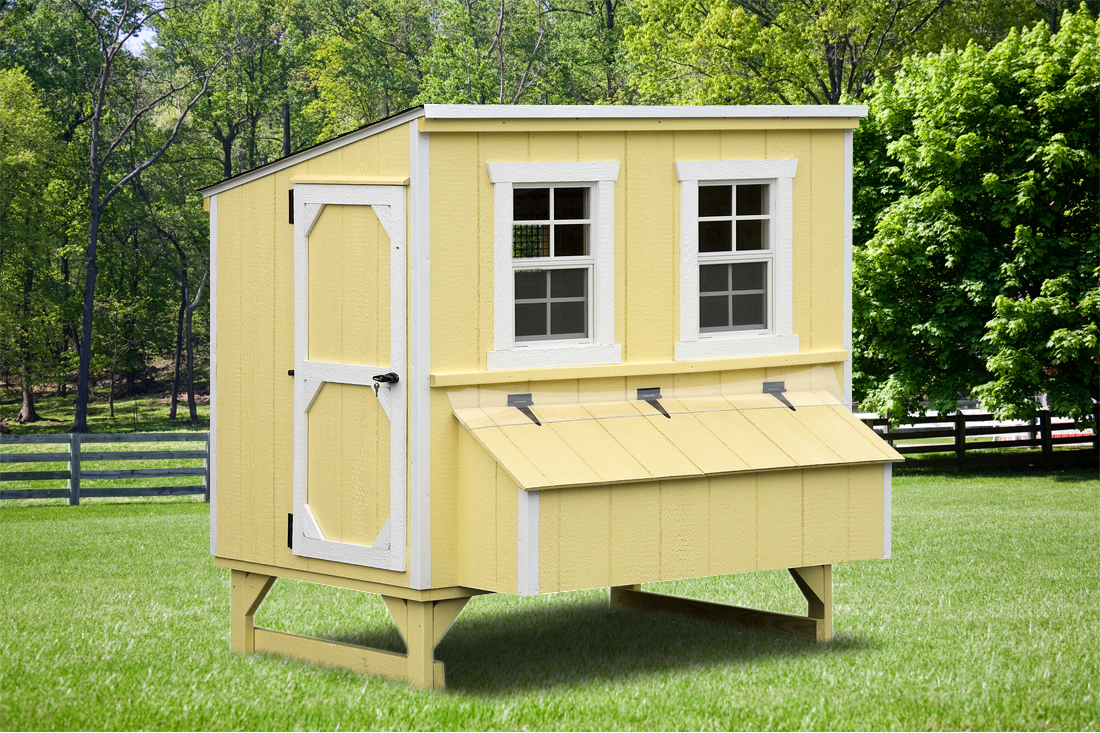 Chicken Coops Best In Backyards