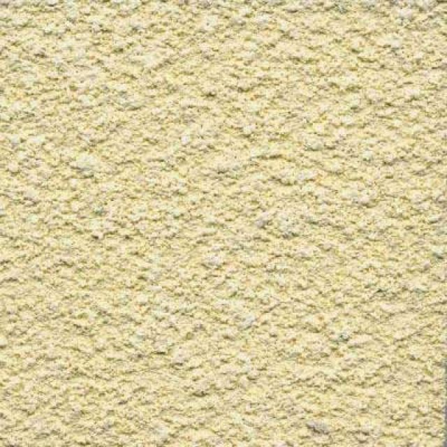 Stucco---Cream