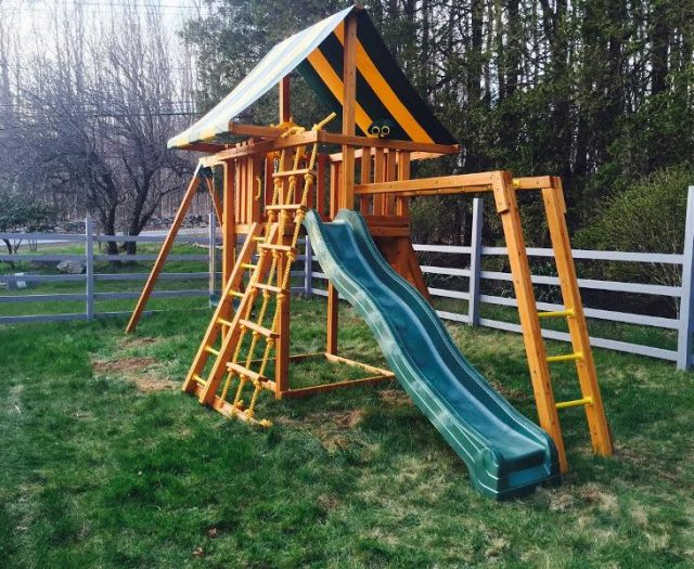 Dream Wood Swing Set with Monkey Bars