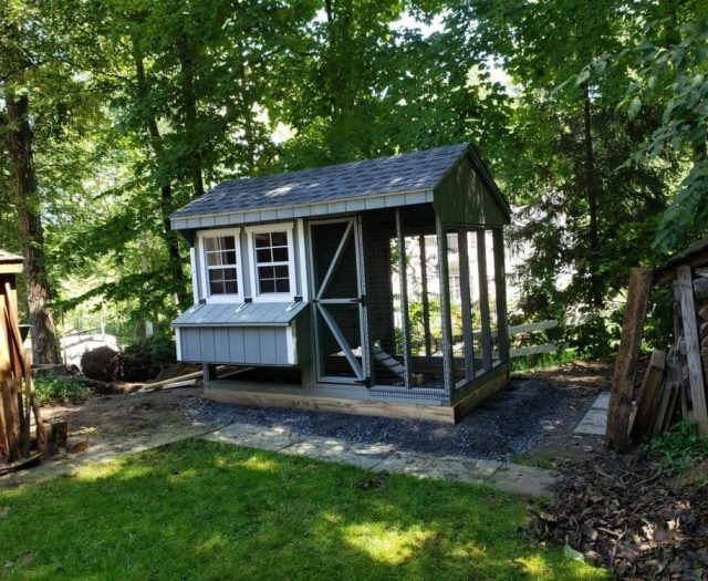 quaker combo chicken coop with T-111 siding and white trim