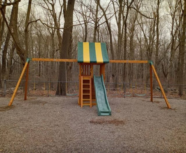 Dream Jungle Gym with Rock Wall, Swings, and Ladder